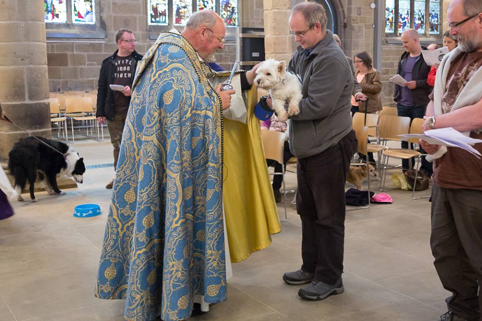 Canon Tony blessing one of the dogs at the pet service