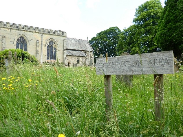 Conservation area in a churchyard