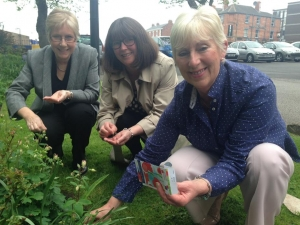Guerilla gardening at the Wakefield Office