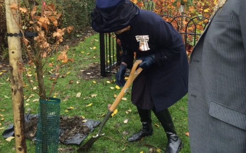 Lord Lieutenant helps with tree planting